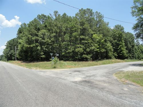 Fruit Hill Road Lot : Saluda : South Carolina