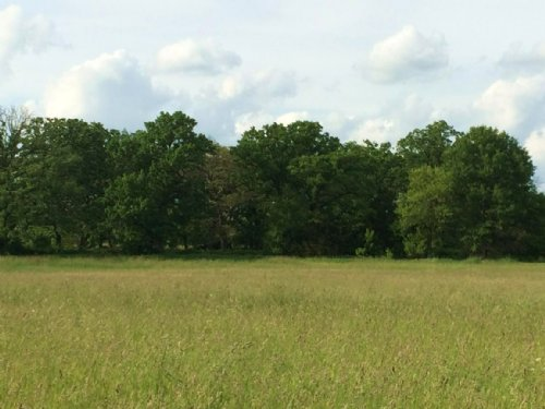 20+/- Acres With Beautiful Ponds : Brooklyn : Dane County : Wisconsin