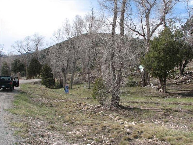 8660620, Beautiful Maysville Meadow : Maysville : Chaffee County : Colorado