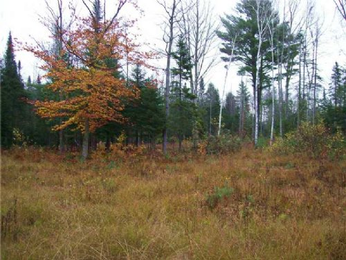 11 Acre Parcel : Pittsfield : Somerset County : Maine