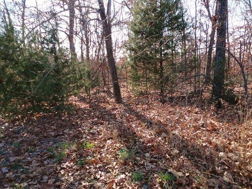 1/3 Acre Horseshoe Bend Crown Lake : Horseshoe Bend : Izard County : Arkansas