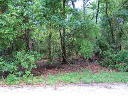 Nice 5 Acre Tract (770314-mkh) : Chiefland : Levy County : Florida
