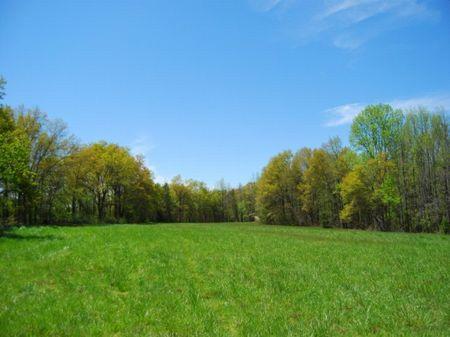 18.36 Acre Farm : Chesnee : Spartanburg County : South Carolina