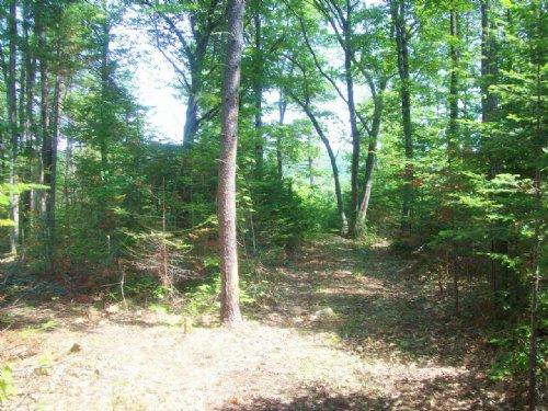 Round Pond Sanctuary : Skowhegan : Somerset County : Maine