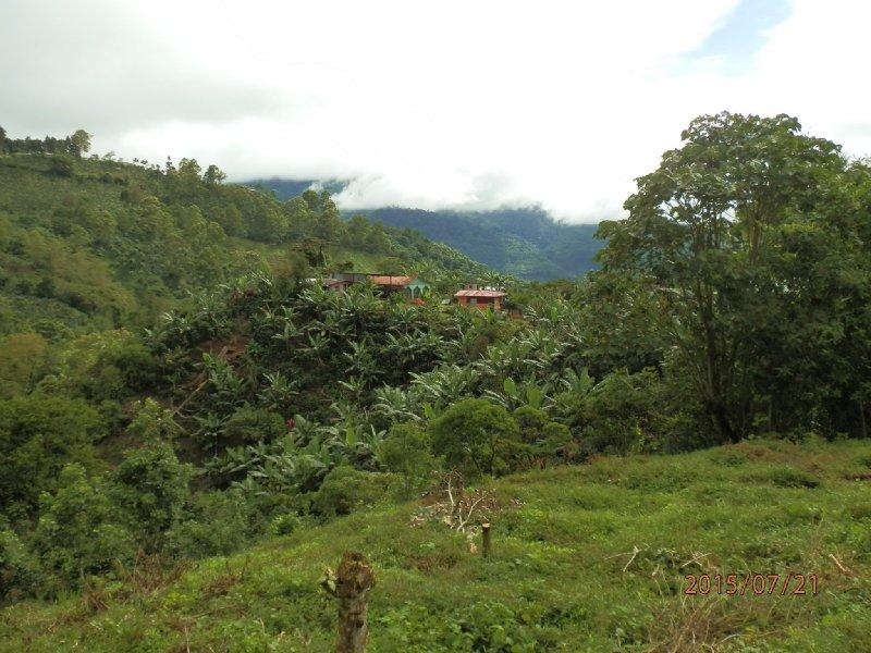 Riverfront, 3/4 Acre, Great Views : Orosi De Cartago : Costa Rica
