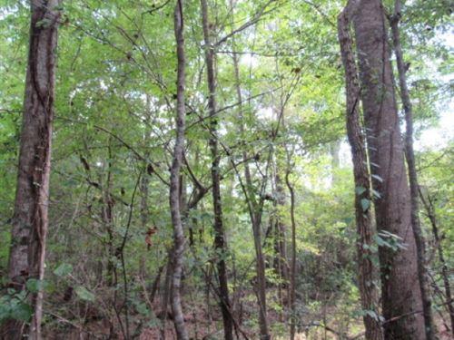 Neil Jackson Lane : Prentiss : Jefferson Davis County : Mississippi