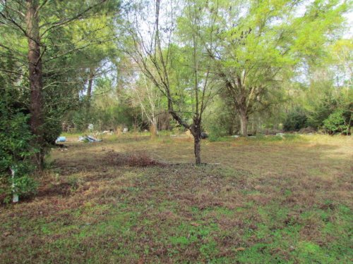 Reduced .48 Acres 769745 : Old Town : Dixie County : Florida