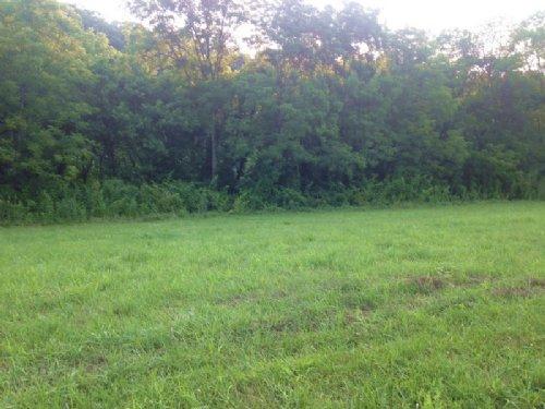 Richardson River Lot 19 : Tompkinsville : Monroe County : Kentucky