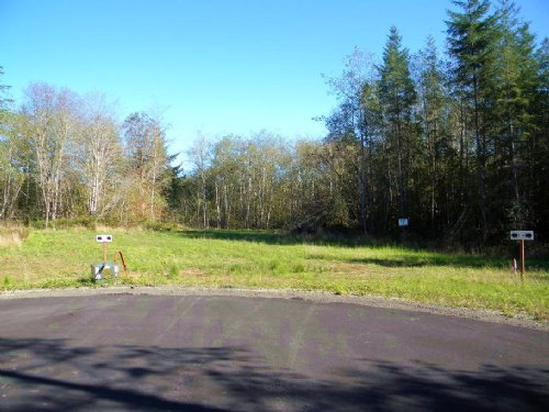 Forested 5.65 Acres : Elma : Grays Harbor County : Washington