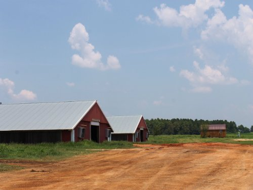2 House Broiler Farm On 15+/- Acres : Chancellor : Coffee County : Alabama