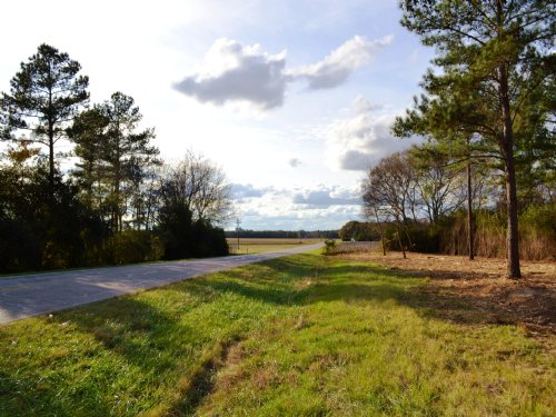 Holtville Lot A 10 +/- Acres : Holtville : Elmore County : Alabama