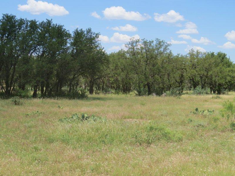 Recreational Land : Eden : Concho County : Texas