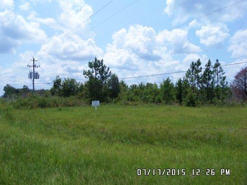 7 Acres On Hwy 341 N, Collins Loop : Odum : Wayne County : Georgia