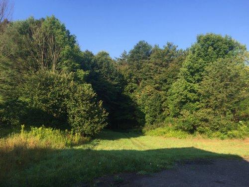 Four Season Country Views : Amboy : Oswego County : New York
