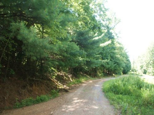 5.307 Wooded Acres : Independence : Grayson County : Virginia