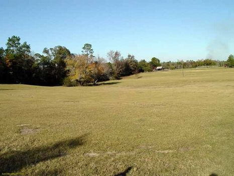 8 +/- Acres Country Pasture Land : Dublin : Laurens County : Georgia