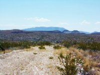 Tract 6238 : Terlingua : Brewster County : Texas