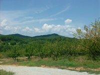 Mountain Top Setting : Lakemont : Rabun County : Georgia
