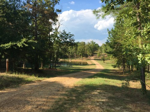 Country Living On 20 Ac : Wesson : Copiah County : Mississippi