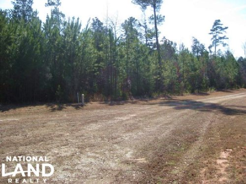 Private Home Site Lot : Little Mountain : Newberry County : South Carolina