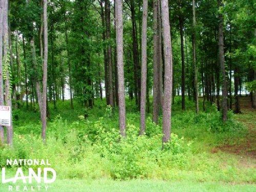 1.02 Acre Recreational Homesite : Akron : Hale County : Alabama