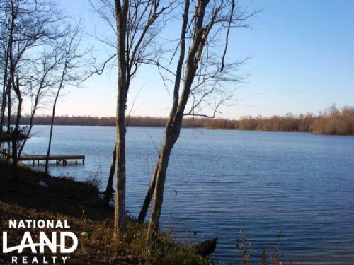Black Warrior Bay Residential Lot : Sawyerville : Hale County : Alabama