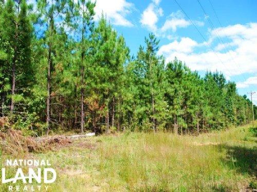 Plum Branch Recreational Homesite : Plum Branch : McCormick County : South Carolina