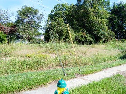 0.24 +/- Acres In Orangeburg : Orangeburg : South Carolina