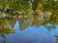5.74 Acres With Pond In Inman : Inman : Spartanburg County : South Carolina