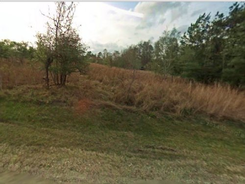 Residential Lot For Sale : Coldspring : San Jacinto County : Texas