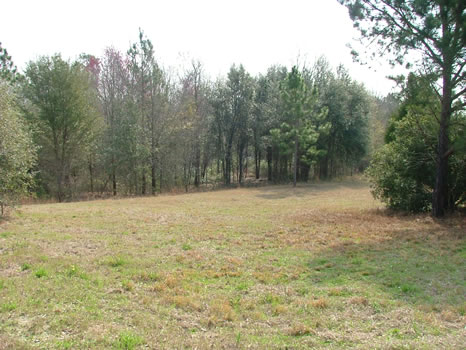 1.86 Acres : Swainsboro : Emanuel County : Georgia