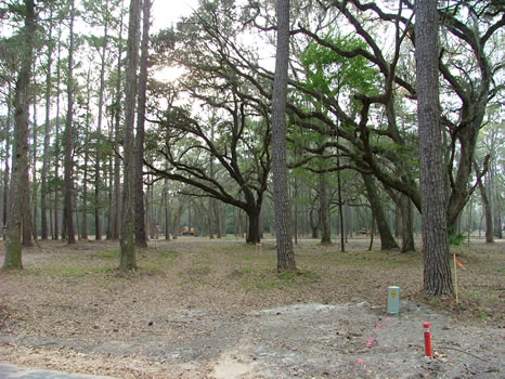 Residential Lot in Shell Point Cove : Darien : McIntosh County : Georgia