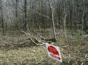 2.00 Acres  : Marlinton : Pocahontas County : West Virginia