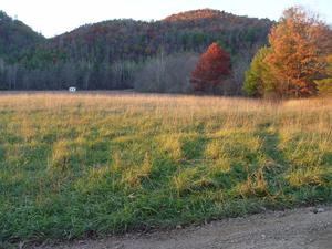 10.30 Acres  : neola : Greenbrier County : West Virginia