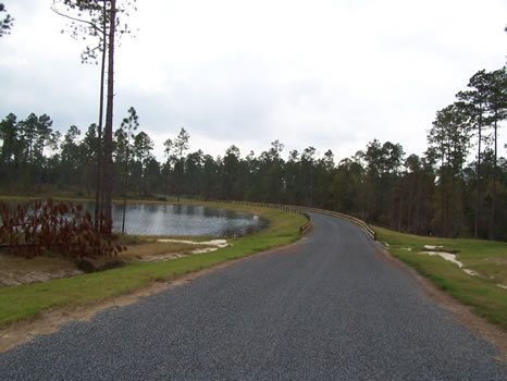 4.89 Acre Lot | Highland Lakes : Eastman : Dodge County : Georgia